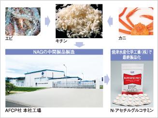N-アセチルグルコサミン(NAG)製品化の流れ
