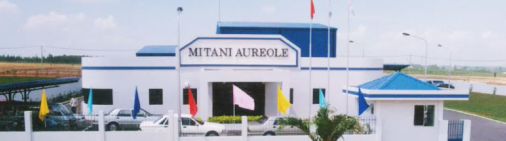 OUR BUSINESS : Aureole Group in Vietnam | Mitani Sangyo Co